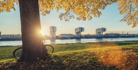 View of the Cologne Skyline at sunset in autumn- Stock Photo or Stock Video of rcfotostock | RC-Photo-Stock