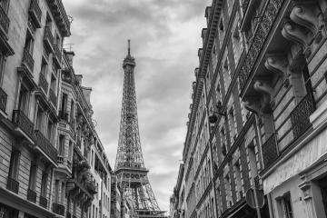 View of the Eiffel Tower from the old Town in Paris, France : Stock Photo or Stock Video Download rcfotostock photos, images and assets rcfotostock | RC-Photo-Stock.: