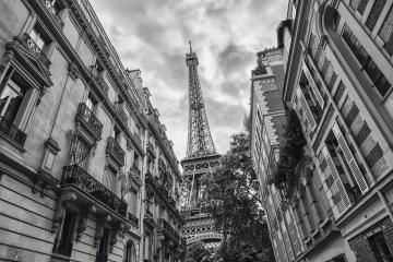View of the Eiffel Tower in Paris, France black and white colored- Stock Photo or Stock Video of rcfotostock | RC-Photo-Stock