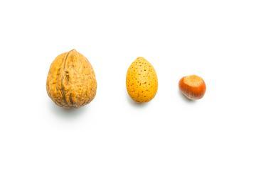 walnut almond hazelnut- Stock Photo or Stock Video of rcfotostock | RC-Photo-Stock