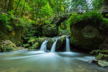 Waterfall in a deep forest- Stock Photo or Stock Video of rcfotostock | RC-Photo-Stock