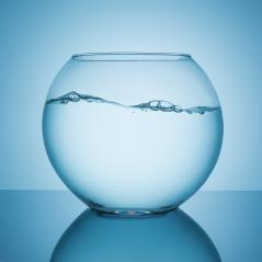 wavy water surface in a fishbowl- Stock Photo or Stock Video of rcfotostock | RC-Photo-Stock