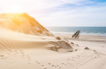 way from the dunes to the beach- Stock Photo or Stock Video of rcfotostock | RC-Photo-Stock