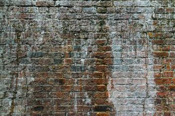 weathered brick wall with moss growing out- Stock Photo or Stock Video of rcfotostock | RC-Photo-Stock