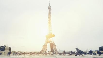 wedding couple near Eiffel tower in Paris, romantic kiss, France.- Stock Photo or Stock Video of rcfotostock | RC-Photo-Stock