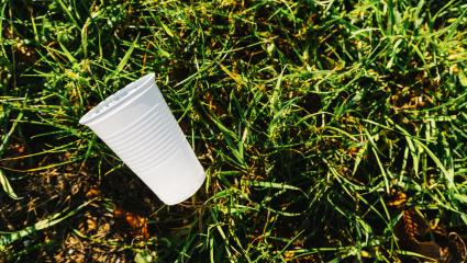 white Plastic cup pollution on a meadow. copyspace for your individual text : Stock Photo or Stock Video Download rcfotostock photos, images and assets rcfotostock | RC-Photo-Stock.: