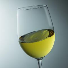 white wine in a glass- Stock Photo or Stock Video of rcfotostock | RC-Photo-Stock