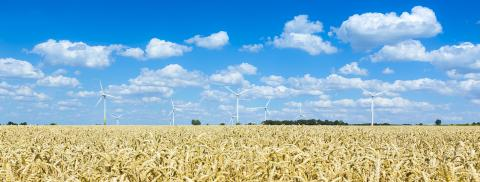 wind farm with Pinwheels on agriculture cornfiled landscape with- Stock Photo or Stock Video of rcfotostock | RC-Photo-Stock