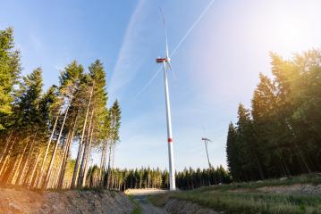 Wind turbines in the forest- Stock Photo or Stock Video of rcfotostock | RC-Photo-Stock