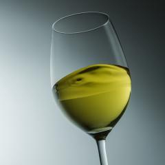 wine tasting- Stock Photo or Stock Video of rcfotostock | RC-Photo-Stock