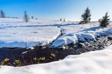 Winter at the hautes Fagnes  : Stock Photo or Stock Video Download rcfotostock photos, images and assets rcfotostock | RC-Photo-Stock.: