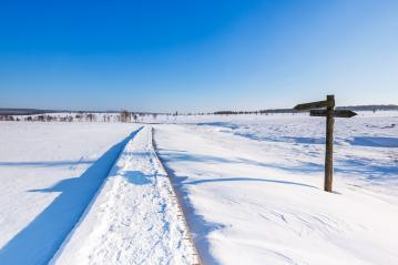 Winter hike in the High Fens (Hautes Fagnes) : Stock Photo or Stock Video Download rcfotostock photos, images and assets rcfotostock | RC-Photo-Stock.: