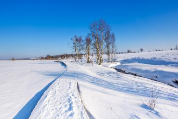 Winter in the High Fens at Baraque Michel : Stock Photo or Stock Video Download rcfotostock photos, images and assets rcfotostock | RC-Photo-Stock.: