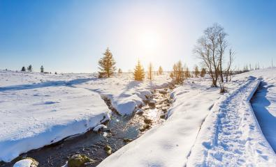 Wintertrail at the Hautes Fagnes - Stock Photo or Stock Video of rcfotostock | RC-Photo-Stock