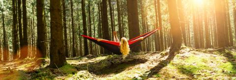 Woman resting in hammock outdoors. Relax and enjoy the nature in the forest- Stock Photo or Stock Video of rcfotostock | RC-Photo-Stock