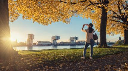 Woman takes a picture from the Skyline of Cologne at autumn- Stock Photo or Stock Video of rcfotostock | RC-Photo-Stock