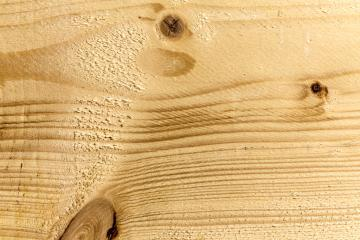 Wood tree board texture pattern- Stock Photo or Stock Video of rcfotostock | RC-Photo-Stock