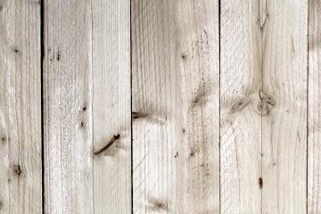 Wood tree boards texture pattern : Stock Photo or Stock Video Download rcfotostock photos, images and assets rcfotostock | RC-Photo-Stock.: