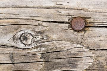Wood tree texture pattern with astrakhan rusted nail- Stock Photo or Stock Video of rcfotostock | RC-Photo-Stock