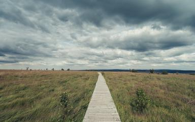 Wooden boardwalk through the recreation area high Venn (Hautes fagnes) in belgium with dramtic cloudy sky.- Stock Photo or Stock Video of rcfotostock | RC-Photo-Stock