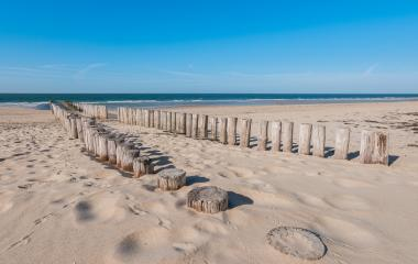 Wooden breakwaters on beautiful sandy beach on sunny summer day- Stock Photo or Stock Video of rcfotostock | RC-Photo-Stock