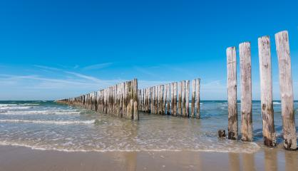 Wooden Groyne on the Beach in the Netherlands : Stock Photo or Stock Video Download rcfotostock photos, images and assets rcfotostock | RC-Photo-Stock.: