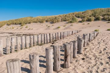 Wooden groynes on beautiful sandy beach dunes in Domburg, Zeeland, Holland : Stock Photo or Stock Video Download rcfotostock photos, images and assets rcfotostock | RC-Photo-Stock.: