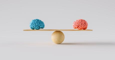 wooden scale balancing one woman brain and one man brain. : Stock Photo or Stock Video Download rcfotostock photos, images and assets rcfotostock | RC-Photo-Stock.: