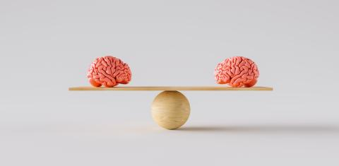 wooden scale balancing two human brains- Stock Photo or Stock Video of rcfotostock | RC-Photo-Stock