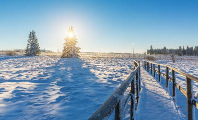 wooden trail in to a winter landscape at sunrise : Stock Photo or Stock Video Download rcfotostock photos, images and assets rcfotostock | RC-Photo-Stock.: