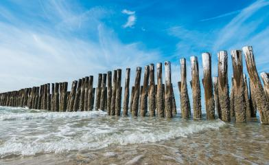 wooden wave breakers at the beach in Domburg, Netherlands- Stock Photo or Stock Video of rcfotostock   RC-Photo-Stock