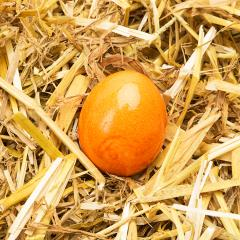 Yellow easter egg in straw- Stock Photo or Stock Video of rcfotostock | RC-Photo-Stock