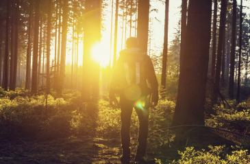 young hiker enjoying the faces of sunset in the woods- Stock Photo or Stock Video of rcfotostock | RC-Photo-Stock