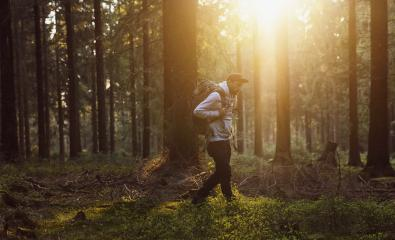 Young hiker trekking in a forest at sunny day- Stock Photo or Stock Video of rcfotostock | RC-Photo-Stock
