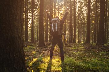 Young man in silent forrest with sunlight- Stock Photo or Stock Video of rcfotostock   RC-Photo-Stock