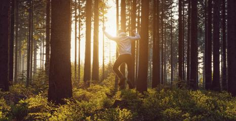 young man jumping in to the forest at sunset- Stock Photo or Stock Video of rcfotostock | RC-Photo-Stock