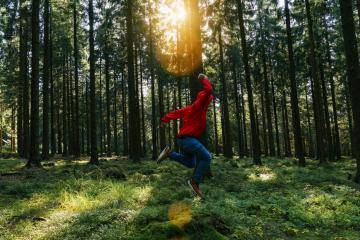 Young man jumps in the green forrest with red jacket and enjoys nature- Stock Photo or Stock Video of rcfotostock | RC-Photo-Stock