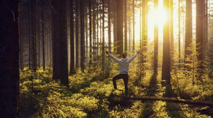 Young man raised hands stand in deep forrest and enjoys nature and sunlight - Travel Lifestyle emotional concept : Stock Photo or Stock Video Download rcfotostock photos, images and assets rcfotostock | RC-Photo-Stock.: