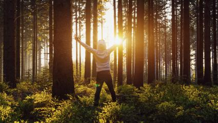 Young man raised hands stand in forrest and enjoys nature and sunlight- Stock Photo or Stock Video of rcfotostock | RC-Photo-Stock