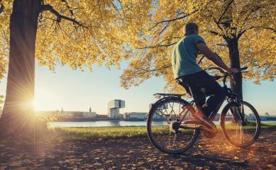 young man ride a bicycle at the rhine shore in cologne, germany- Stock Photo or Stock Video of rcfotostock | RC-Photo-Stock