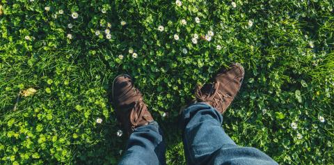 young man stands in a Daisy meadow at spring, high angle footsie or flortrait, personal pespective from above.- Stock Photo or Stock Video of rcfotostock | RC-Photo-Stock