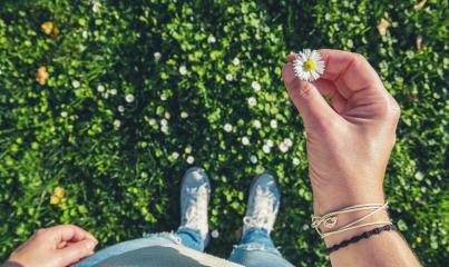 young woman stands on Meadow and holds a daisy in his hand, high angle footsie or flortrait, personal pespective from above. : Stock Photo or Stock Video Download rcfotostock photos, images and assets rcfotostock | RC-Photo-Stock.: