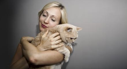 Young Woman with Cat- Stock Photo or Stock Video of rcfotostock | RC-Photo-Stock