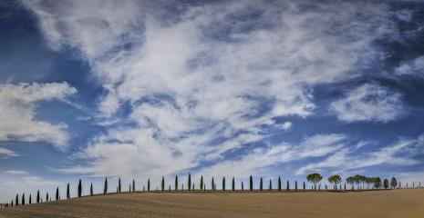 Zypressenallee mit Wolken und blauem Himmel, Toskana, Italien : Stock Photo or Stock Video Download rcfotostock photos, images and assets rcfotostock | RC-Photo-Stock.: