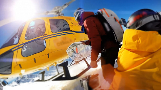 Actionsportlers were dropped by a helicopter at the top of the mountains. The sun is shining brightly in the blue sky.- Stock Photo or Stock Video of rcfotostock | RC-Photo-Stock