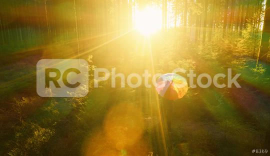 Aerial view of man with rainbow umbrella in the sunlight forest - view from a drone  : Stock Photo or Stock Video Download rcfotostock photos, images and assets rcfotostock | RC-Photo-Stock.: