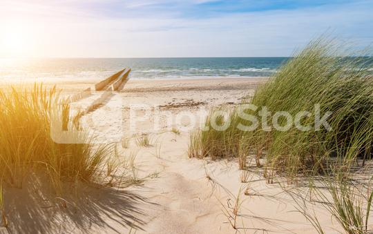 beach view from the dunes  : Stock Photo or Stock Video Download rcfotostock photos, images and assets rcfotostock | RC-Photo-Stock.: