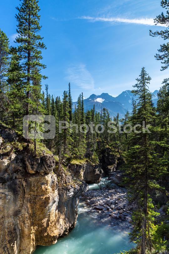 Beauty creek canyon with river at the jasper national park canada  : Stock Photo or Stock Video Download rcfotostock photos, images and assets rcfotostock | RC-Photo-Stock.: