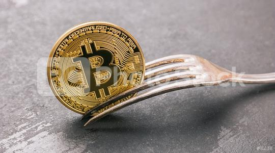 bitcoin (BTC) Hard Fork, golden cryptocurrency concept image  : Stock Photo or Stock Video Download rcfotostock photos, images and assets rcfotostock | RC-Photo-Stock.: