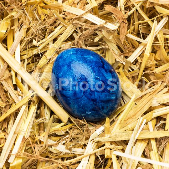 blue easter egg in straw  : Stock Photo or Stock Video Download rcfotostock photos, images and assets rcfotostock | RC-Photo-Stock.: